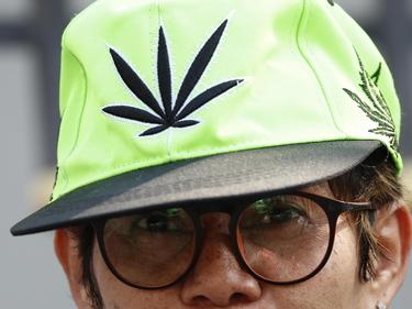 Cannabis libera, il disegno di legge del M5S. Lo stop di Fontana foto 1